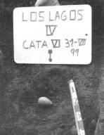 Foto 4. Percutor de cuarzita - Lagos IV