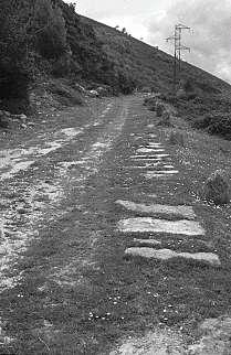 Sección actual del Camino jalonado en la zona d e terraplén por los guardaruedas