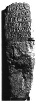 Término Augustal Legio IV