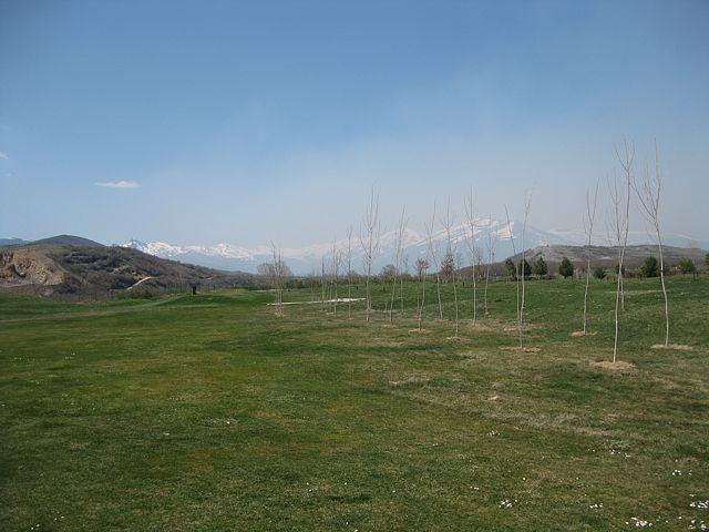 humo en el campo, algo se está quemando
