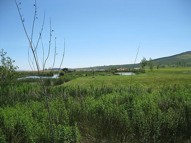 vista desde la salida del hoyo 11, la isla está a la derecha